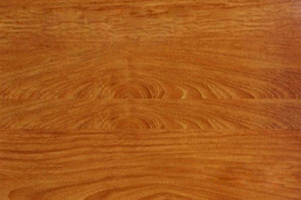 Sàn gỗ Premier P6119
